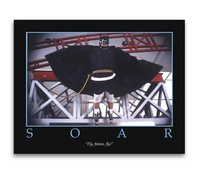 MALLRATS: SOAR Poster