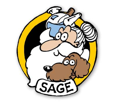 GROO #4: SAGE Cloisonne Pin
